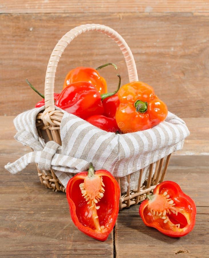 Peperoni freschi del habanero in un canestro fotografie stock