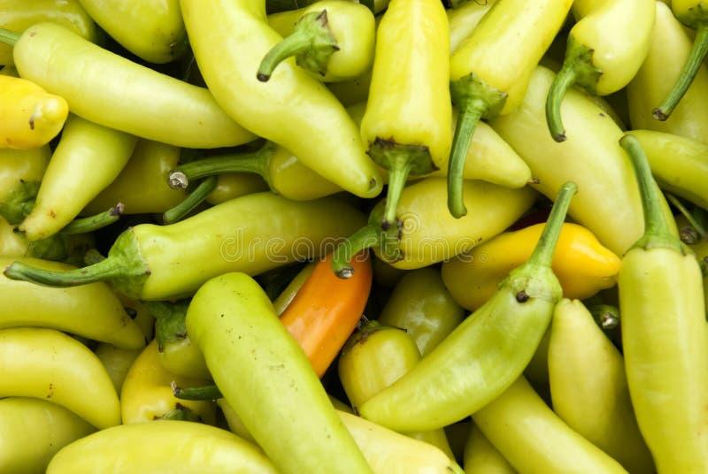 Peperoni gialli del Cile immagine stock libera da diritti