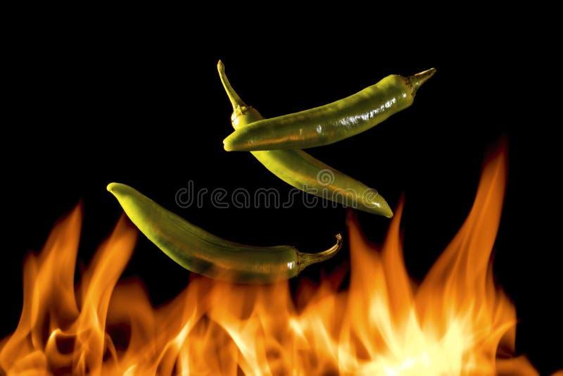 Peperoni mit Flammen lizenzfreie stockbilder