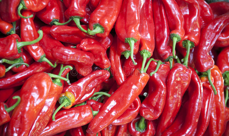 Peperoni ungheresi organici piccanti roventi come fondo immagine stock libera da diritti