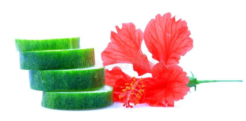 Download Pepino de refrescamento foto de stock. Imagem de verde - 16858140