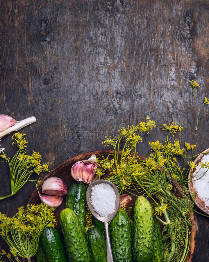 Pepino fresco do jardim com os ingredientes para preservar: colher do sal, do aneto e do alho no fundo de madeira rústico, vista  imagem de stock