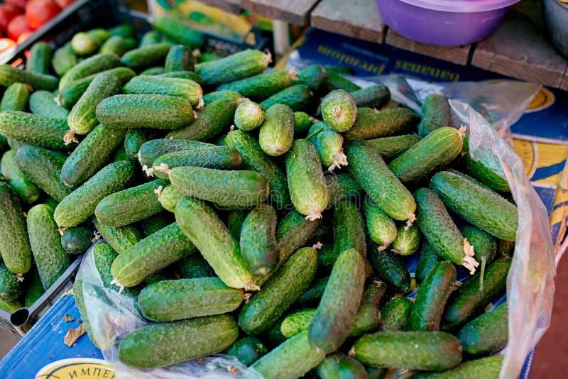 pepino Os vegetais orgânicos frescos na venda no verão local dos fazendeiros introduzem no mercado fora Conceito saudável do alim fotografia de stock royalty free