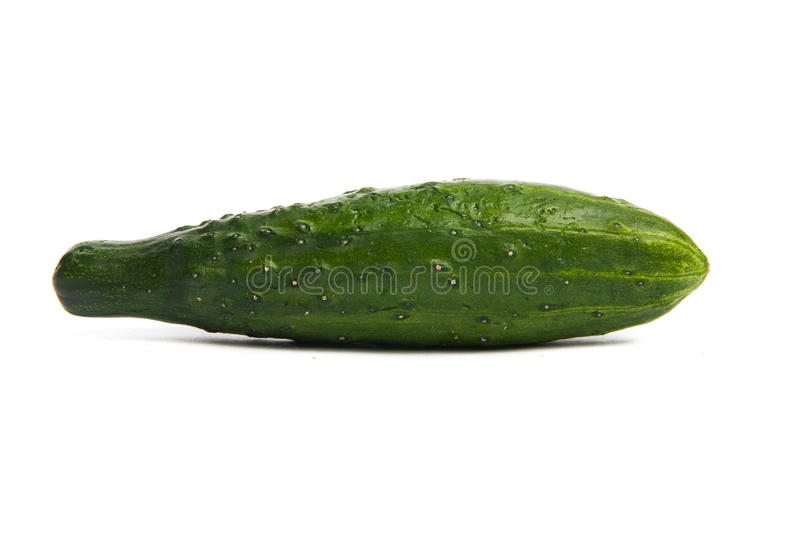 Pepino verde. Isolado no branco. fotografia de stock royalty free