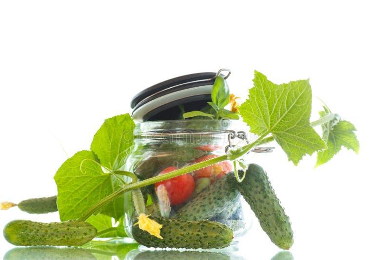 Pepinos conservados com ervas e especiarias fotografia de stock royalty free