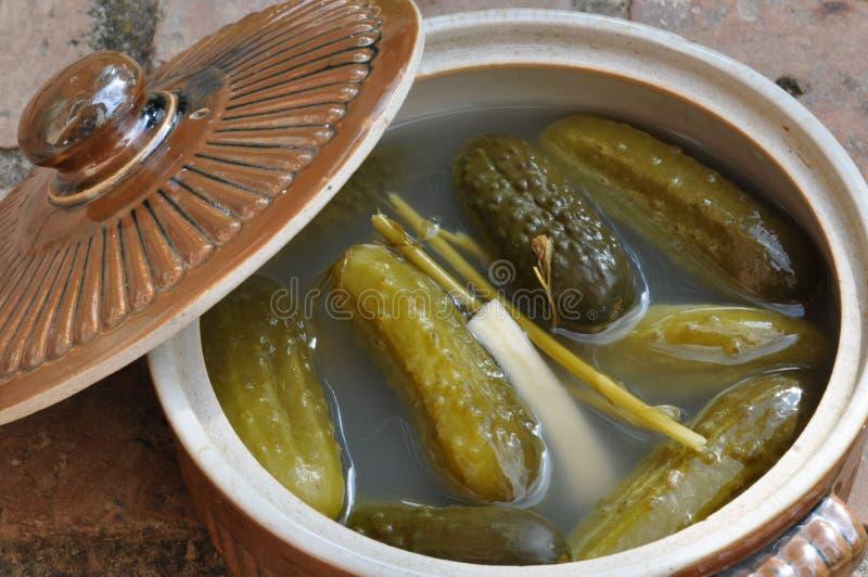 Pepinos conservados en vinagre imagen de archivo