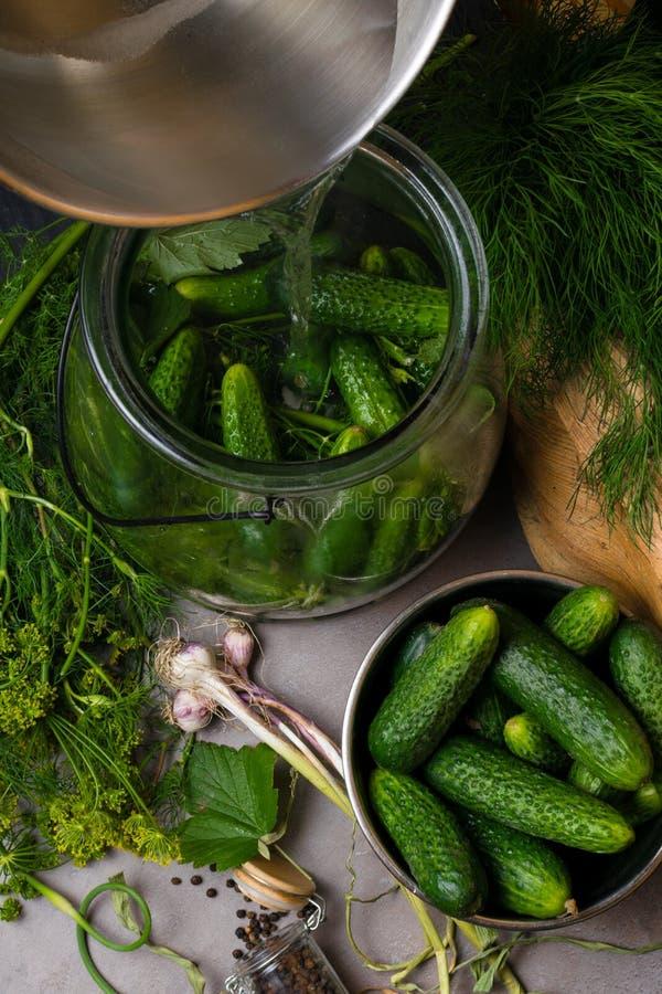 Pepinos crus para conservar Pepinos frescos prontos para enlatar com aneto, folha do corinto, pimenta, alho e especiarias no back foto de stock