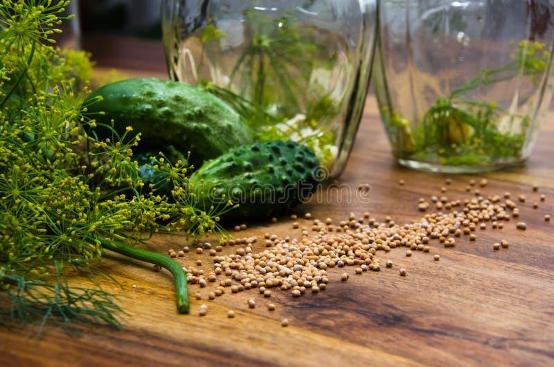 Pepinos de conservação em vinagre fotos de stock royalty free