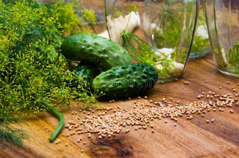 Pepinos de conservação em vinagre imagem de stock