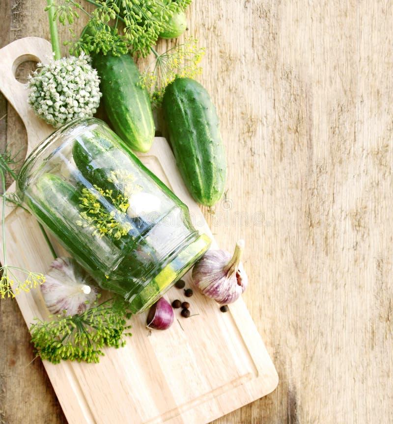 Pepinos de conservação em vinagre fotografia de stock royalty free