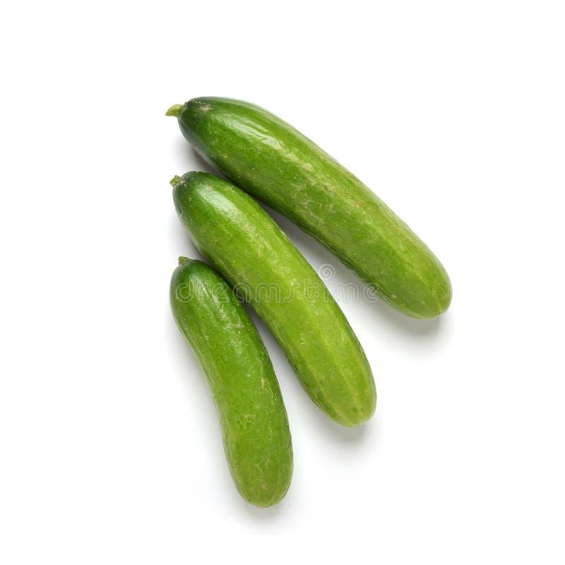Pepinos do tamanho da mordida foto de stock