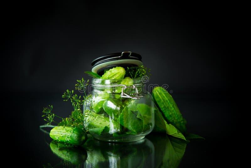 Pepinos e especiarias com as ervas para enlatar em um frasco fotos de stock royalty free