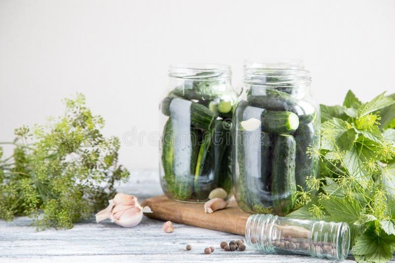 Pepinos, especiarias e ervas em um frasco da preservação Coloca??o em latas caseiro do vegetal foto de stock