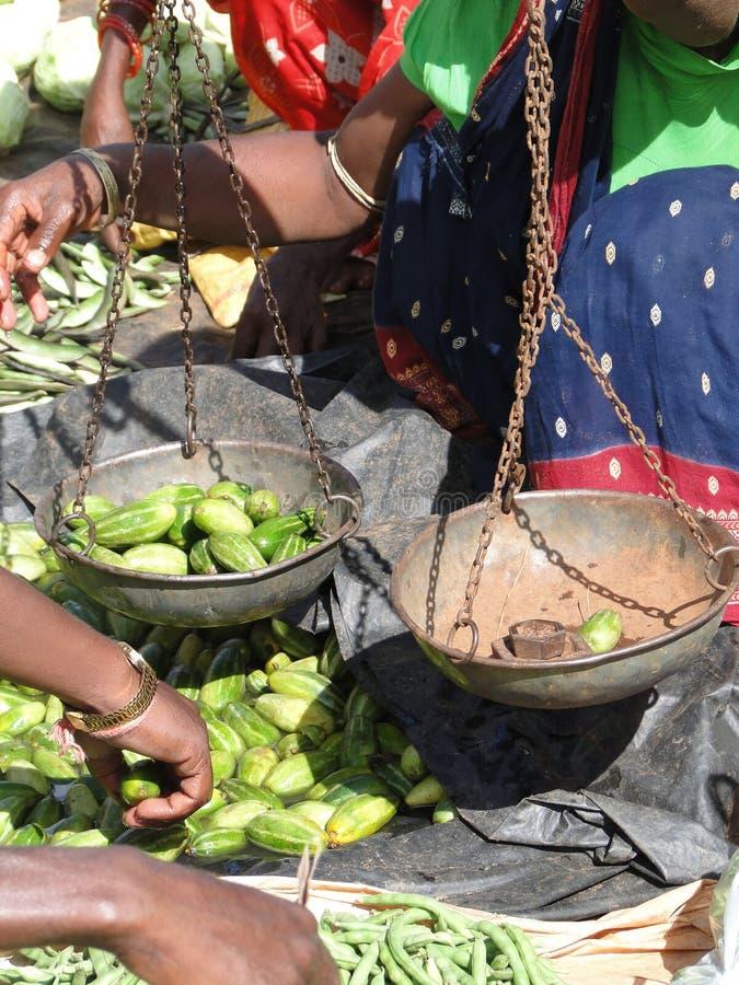 Pepinos indianos do sell dos aldeões imagem de stock