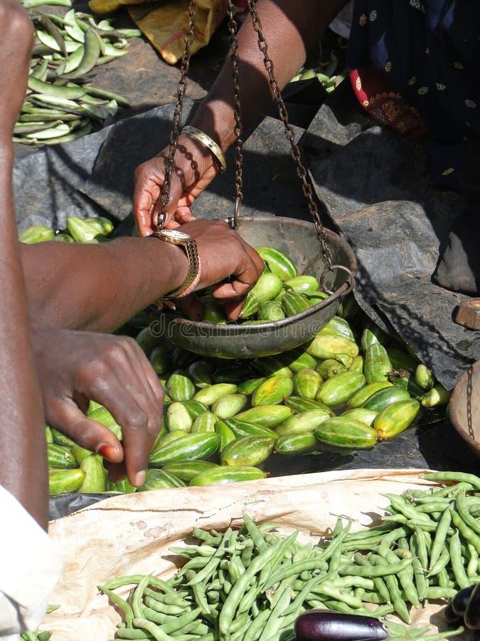Pepinos indianos do sell dos aldeões foto de stock