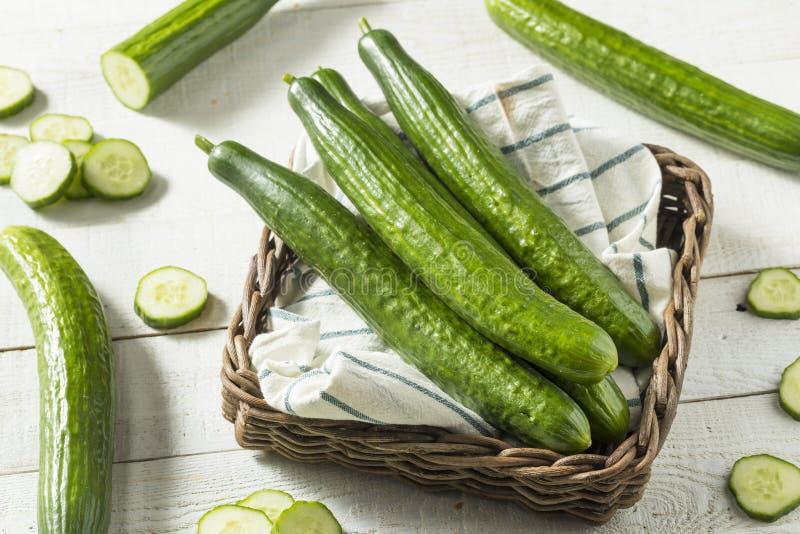 Pepinos ingleses verdes orgânicos saudáveis fotografia de stock