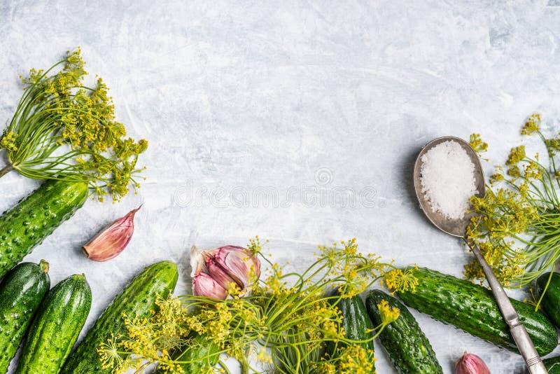 Pepinos orgânicos com os ingredientes para preservar no fundo de madeira cinzento fotos de stock