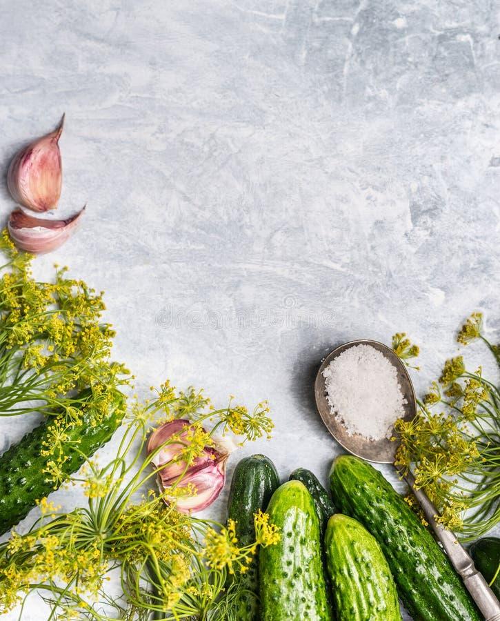 Pepinos orgânicos frescos com os ingredientes para preservar no fundo de madeira cinzento, vista superior fotografia de stock royalty free