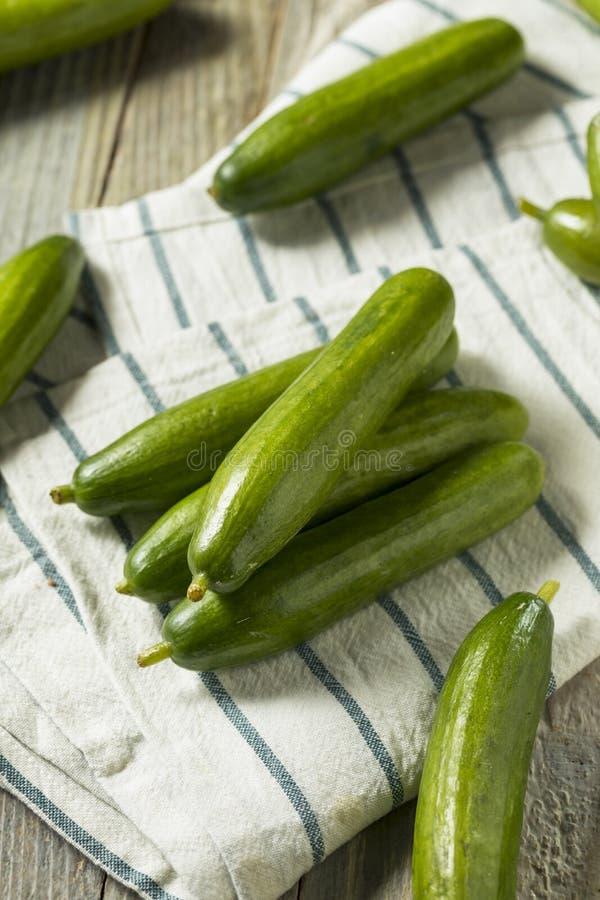 Pepinos persas orgánicos verdes crudos fotografía de archivo