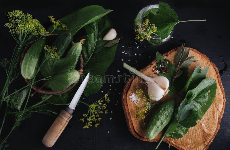 Pepinos salgados Especiarias e ervas para fazer salmouras A ideia superior do fundo de madeira fotografia de stock royalty free