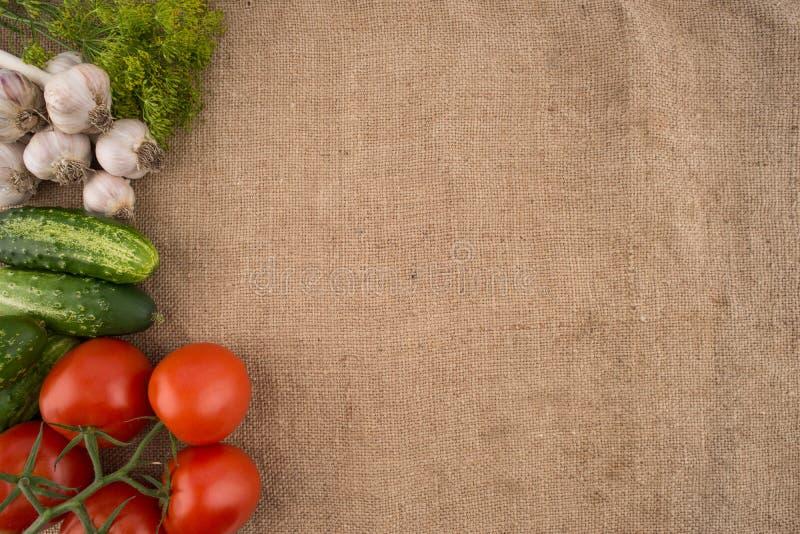 Pepinos, tomates, alho e aneto foto de stock royalty free