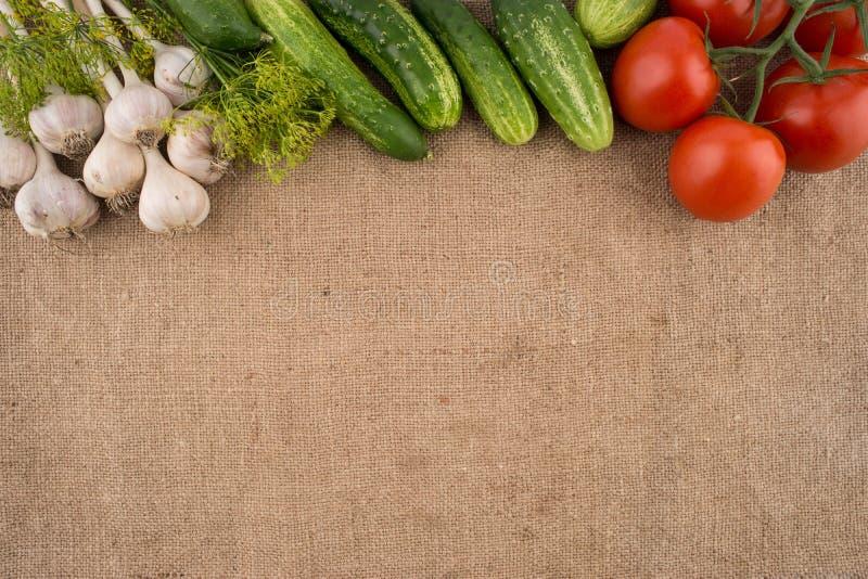 Pepinos, tomates, alho e aneto imagem de stock