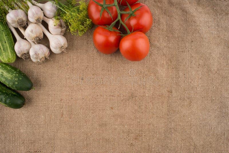 Pepinos, tomates, alho e aneto no fundo do sa velho fotos de stock