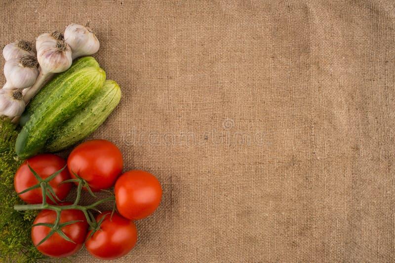Pepinos, tomates, alho e aneto no fundo do sa velho foto de stock