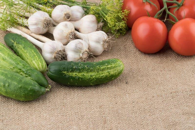 Pepinos, tomates, alho e aneto no fundo do sa velho foto de stock royalty free