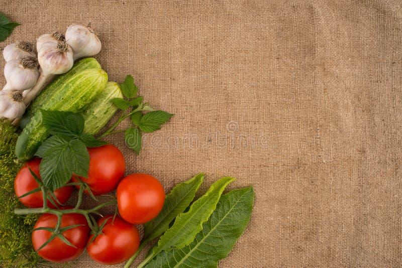 Pepinos, tomates, alho e aneto no fundo do sa velho imagens de stock