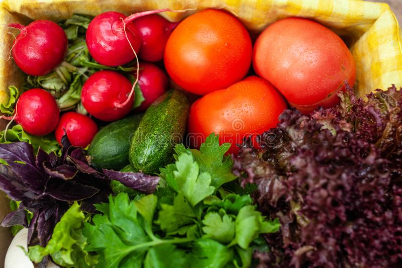 Pepinos, tomates, rábanos, lechuga, albahaca, perejil en una caja con una servilleta amarilla foto de archivo libre de regalías