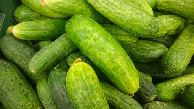 Pepinos verdes en estante en supermercado Consumición orgánica Minorista de la agricultura Comida del ` s del granjero fotografía de archivo libre de regalías