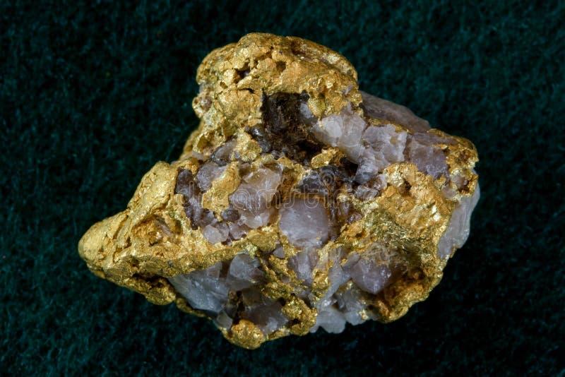 Pepita dell'oro/quarzo del Nevada U.S.A. fotografie stock