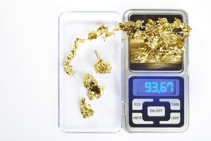 A pepita dourada encontrou pelo prospetor amador tornado mais pesado na escala digital imagem de stock royalty free