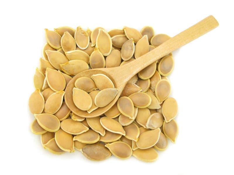 Pepitas das sementes de abóbora imagens de stock royalty free