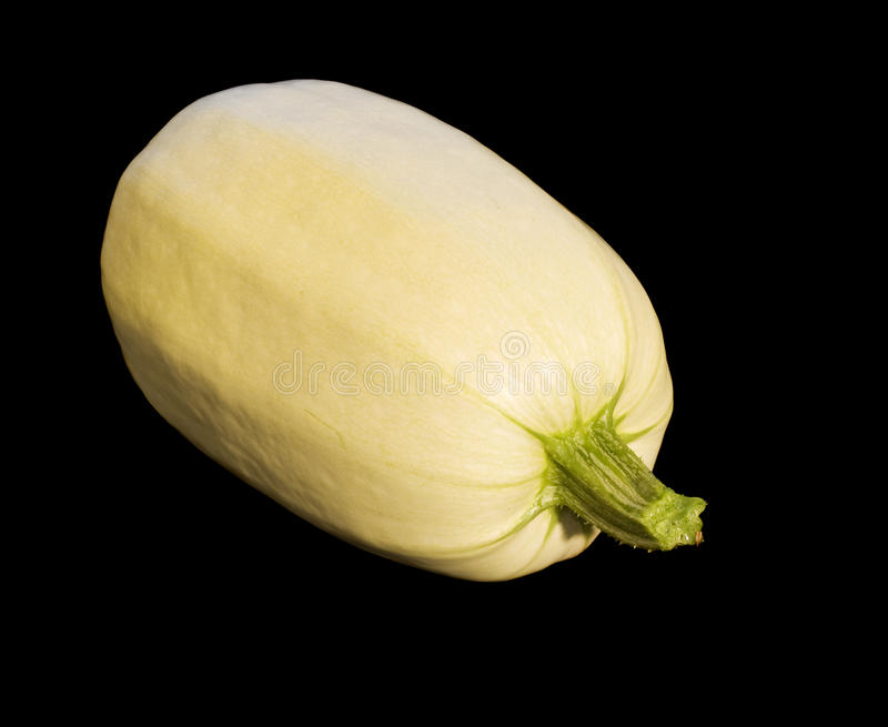 Pepo homegrown orgânico do Cucurbita da polpa de espaguete fotografia de stock royalty free