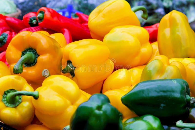 Download Peppar arkivfoto. Bild av bönder, organiskt, ingredienser - 19777194
