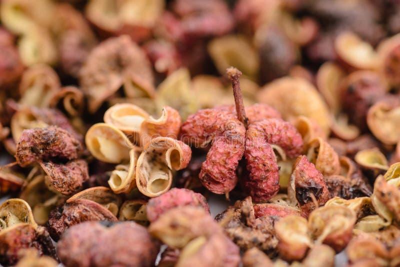 Peppar av Sichuan arkivbild