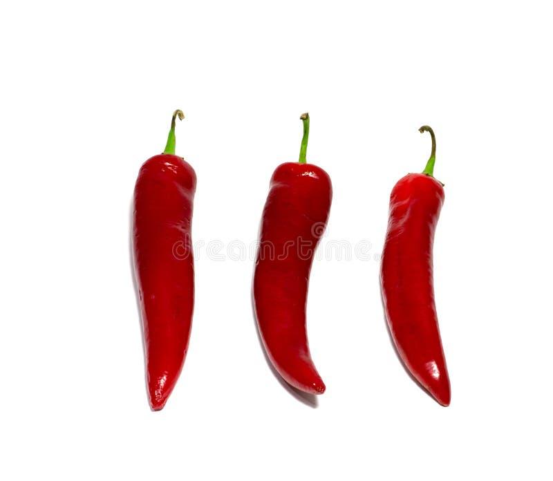 Peppar för röd chili som isoleras på vit bakgrund mat objekt arkivfoto