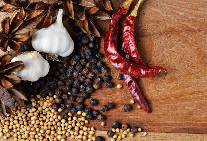 Peppar och torkad chili fotografering för bildbyråer