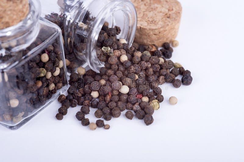Peppar som lagras i behållaren royaltyfri fotografi
