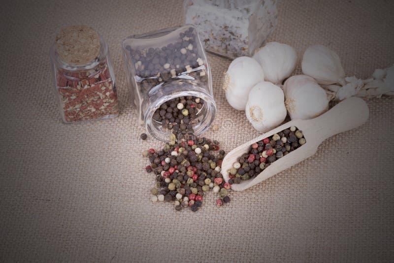 Peppar som lagras i behållaren royaltyfria foton