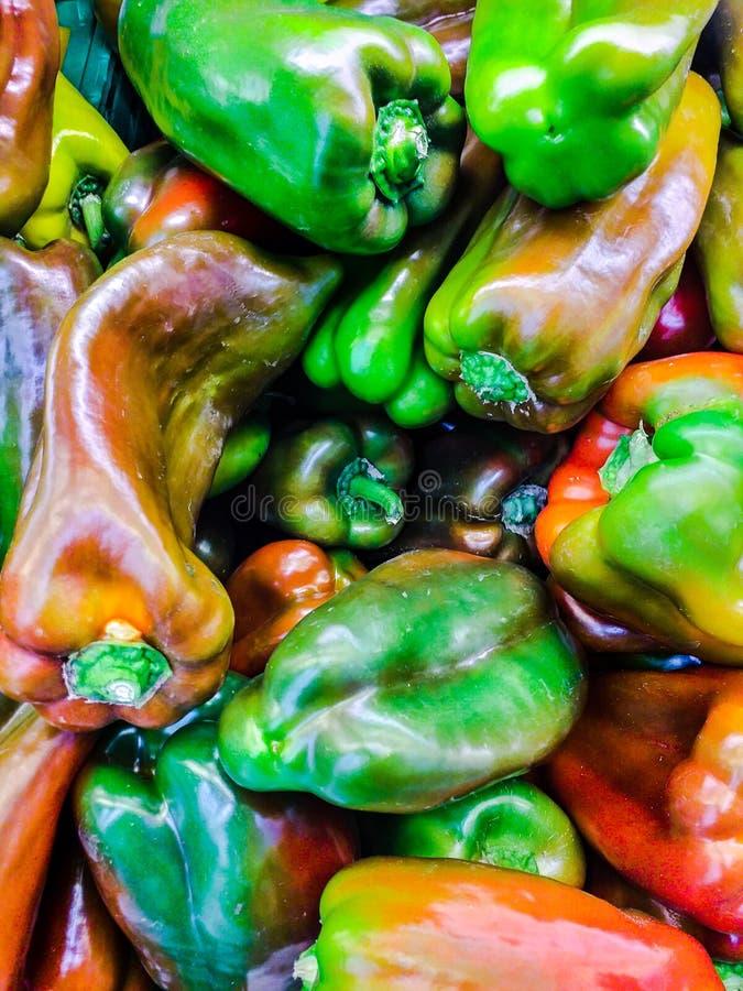 Pepparen är det fallen för gemensamma namnet bäret erhållande från några variationer av den annuum artpaprikan och som används so arkivfoton