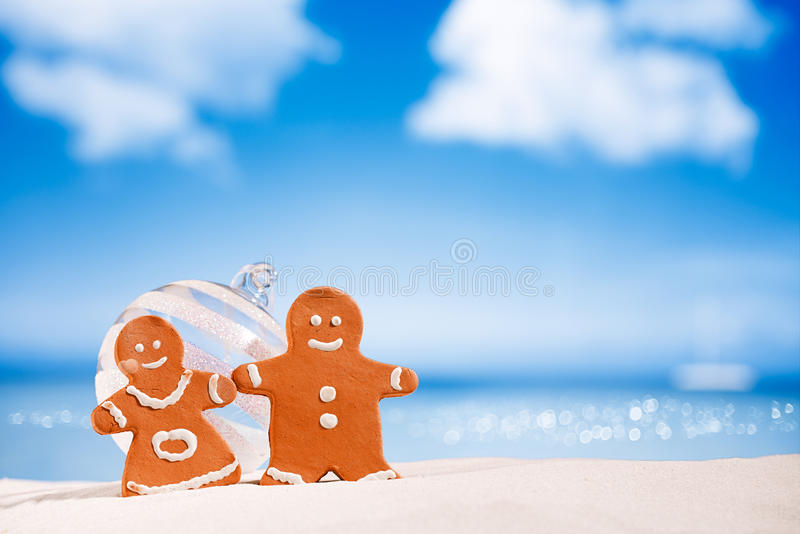 Pepparkakapojke och flicka på stranden med seascapebakgrund royaltyfri foto