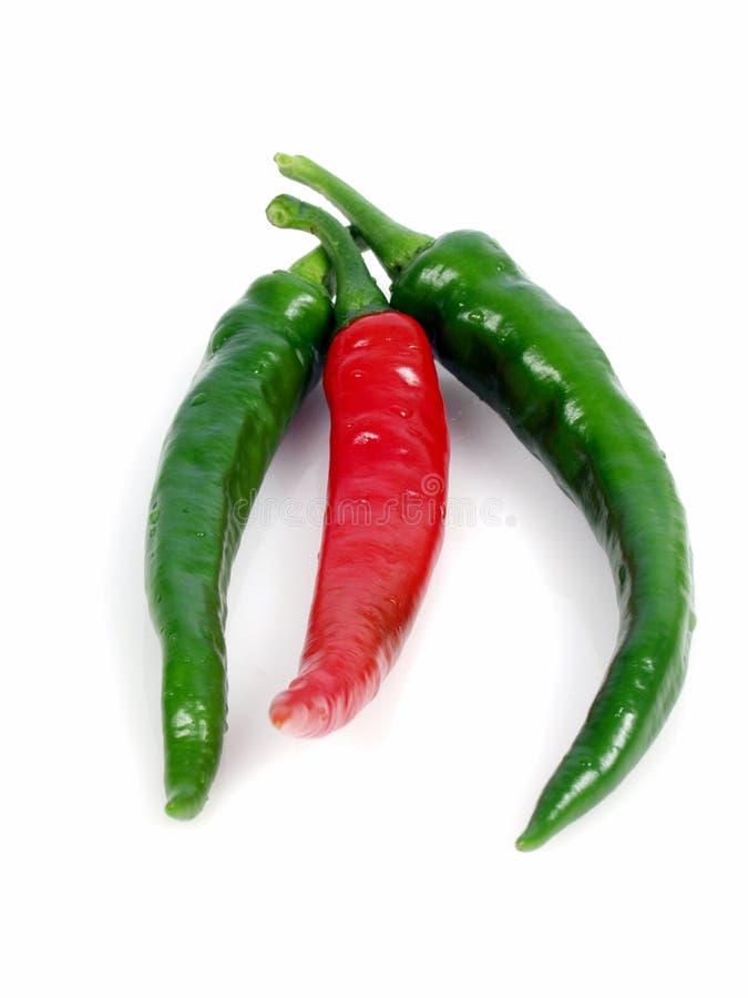 pepper obrazy stock