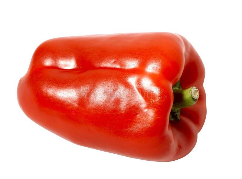 pepper obrazy royalty free