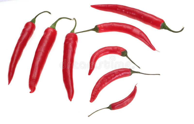 Download Pepper 2 stock image. Image of cook, pepper, chilly, peppers - 19879