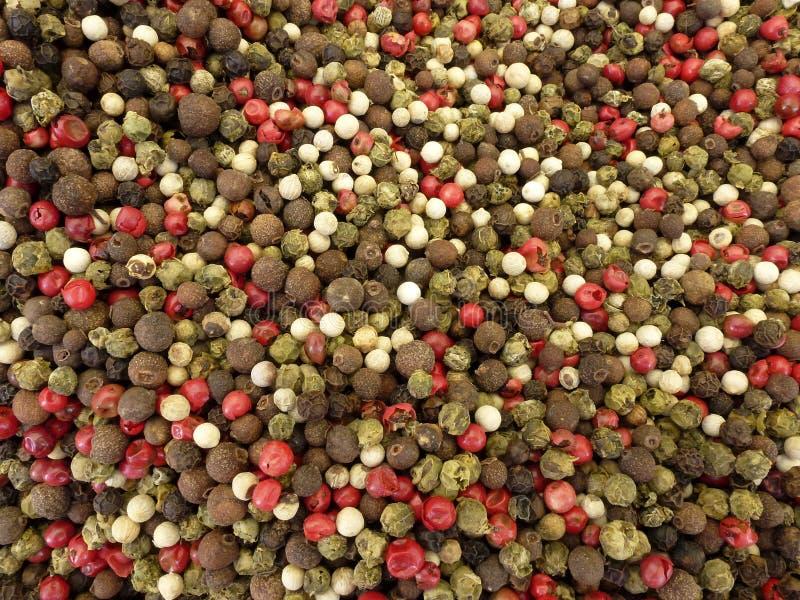 Download Pepper stock photo. Image of food, texture, macro, ingredient - 25574262