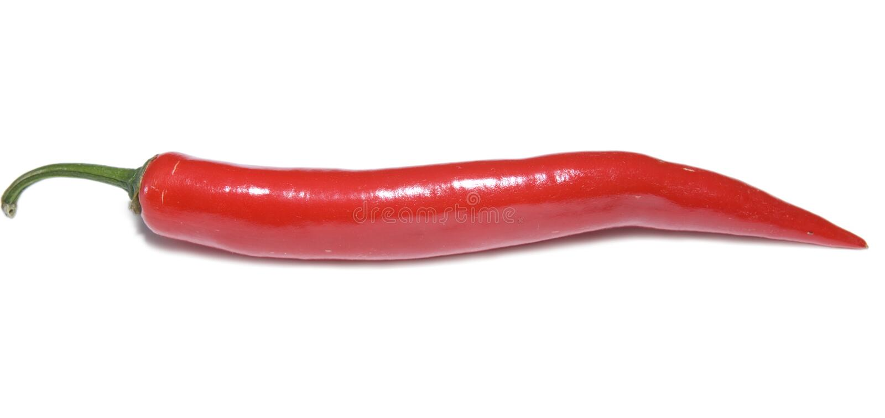 Download Pepper stock image. Image of isolated, tasting, freshness - 5046433