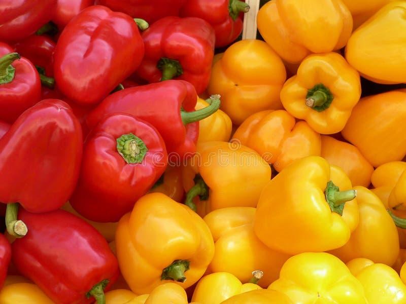 pepper bell zdjęcie royalty free